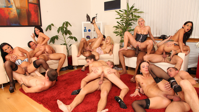 bachelor orgy Bisex Bachelor Party Free Porn Tube - Watch, Download and Cum.