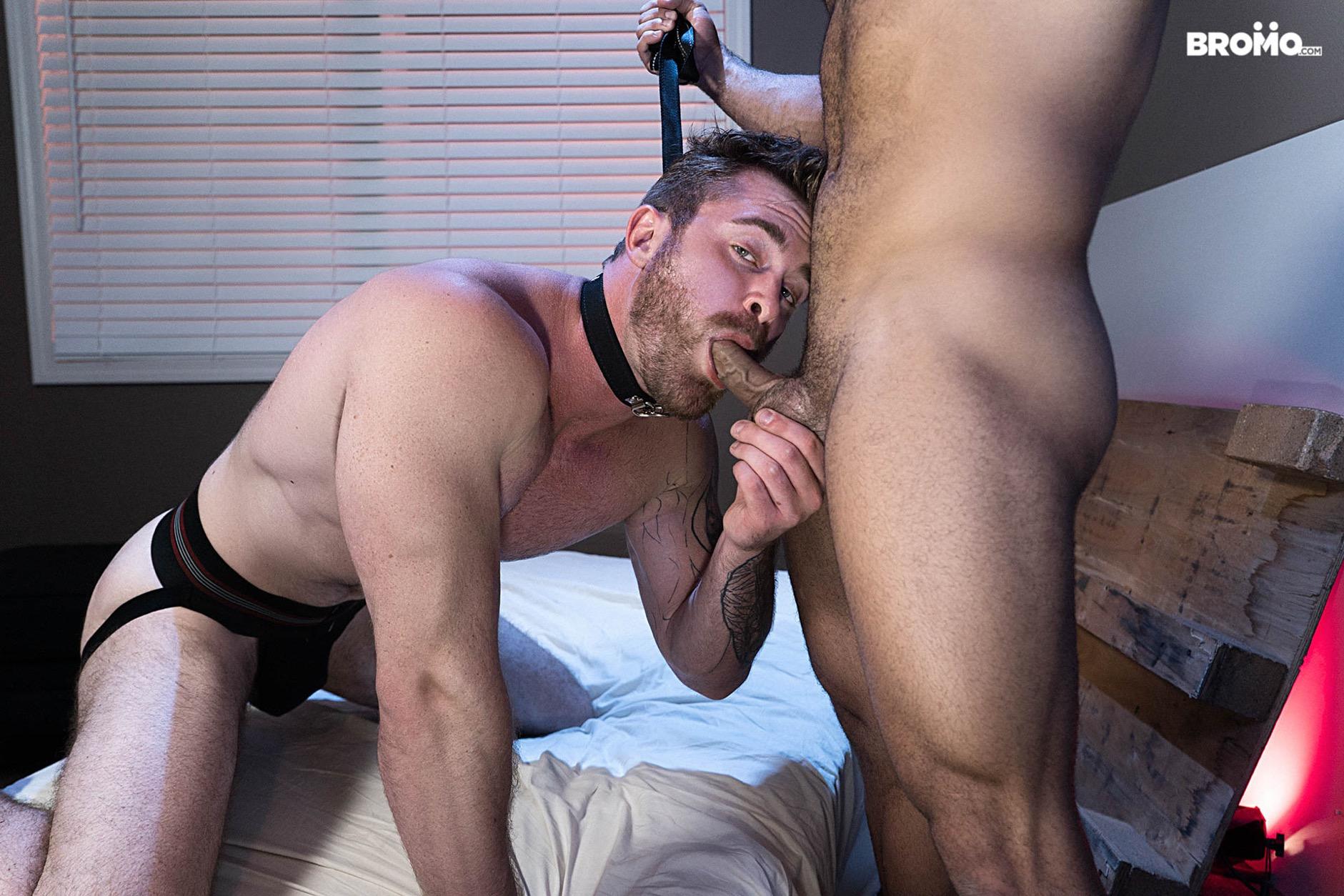 Gay Pup porno